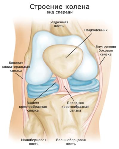 Пластика передней крестообразной связки коленного сустава цена асаны для больных тзобедренных суставов